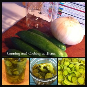 Getting Started With Pickling/Canning guest posts  My name is Roz but lots call me Rosie.  Welcome to Rosies Home Kitchen.  I moved from the UK to France in 2005, gave up my business and with my husband, Paul, and two sons converted a small cottage in rural Brittany to our home   Half Acre Farm.  It was here after years of ready meals and take aways in the UK I realised that I could cook. Paul also learned he could grow vegetables and plant fruit trees; we also keep our own poultry for meat and eggs. Shortly after finishing the work on our house we was featured in a magazine called Breton and since then Ive been featured in a few magazines for my food.  My two sons now have their own families but live near by and Im now the proud grandmother of two little boys. Both of my daughter in laws are both great cooks.  My cooking is home cooking, but often with a French twist, my videos are not there to impress but inspire, So many people say that they cant cook, but we all can, you just got to give it a go.