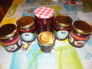 Plum and Nectarine Jam recipes  My name is Roz but lots call me Rosie.  Welcome to Rosies Home Kitchen.  I moved from the UK to France in 2005, gave up my business and with my husband, Paul, and two sons converted a small cottage in rural Brittany to our home   Half Acre Farm.  It was here after years of ready meals and take aways in the UK I realised that I could cook. Paul also learned he could grow vegetables and plant fruit trees; we also keep our own poultry for meat and eggs. Shortly after finishing the work on our house we was featured in a magazine called Breton and since then Ive been featured in a few magazines for my food.  My two sons now have their own families but live near by and Im now the proud grandmother of two little boys. Both of my daughter in laws are both great cooks.  My cooking is home cooking, but often with a French twist, my videos are not there to impress but inspire, So many people say that they cant cook, but we all can, you just got to give it a go.
