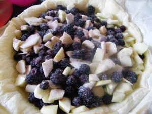 Apple and Blackberry Crumble Pie recipes  My name is Roz but lots call me Rosie.  Welcome to Rosies Home Kitchen.  I moved from the UK to France in 2005, gave up my business and with my husband, Paul, and two sons converted a small cottage in rural Brittany to our home   Half Acre Farm.  It was here after years of ready meals and take aways in the UK I realised that I could cook. Paul also learned he could grow vegetables and plant fruit trees; we also keep our own poultry for meat and eggs. Shortly after finishing the work on our house we was featured in a magazine called Breton and since then Ive been featured in a few magazines for my food.  My two sons now have their own families but live near by and Im now the proud grandmother of two little boys. Both of my daughter in laws are both great cooks.  My cooking is home cooking, but often with a French twist, my videos are not there to impress but inspire, So many people say that they cant cook, but we all can, you just got to give it a go.
