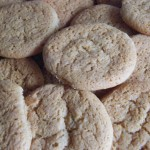 Shortbread Biscuits recipes  My name is Roz but lots call me Rosie.  Welcome to Rosies Home Kitchen.  I moved from the UK to France in 2005, gave up my business and with my husband, Paul, and two sons converted a small cottage in rural Brittany to our home   Half Acre Farm.  It was here after years of ready meals and take aways in the UK I realised that I could cook. Paul also learned he could grow vegetables and plant fruit trees; we also keep our own poultry for meat and eggs. Shortly after finishing the work on our house we was featured in a magazine called Breton and since then Ive been featured in a few magazines for my food.  My two sons now have their own families but live near by and Im now the proud grandmother of two little boys. Both of my daughter in laws are both great cooks.  My cooking is home cooking, but often with a French twist, my videos are not there to impress but inspire, So many people say that they cant cook, but we all can, you just got to give it a go.